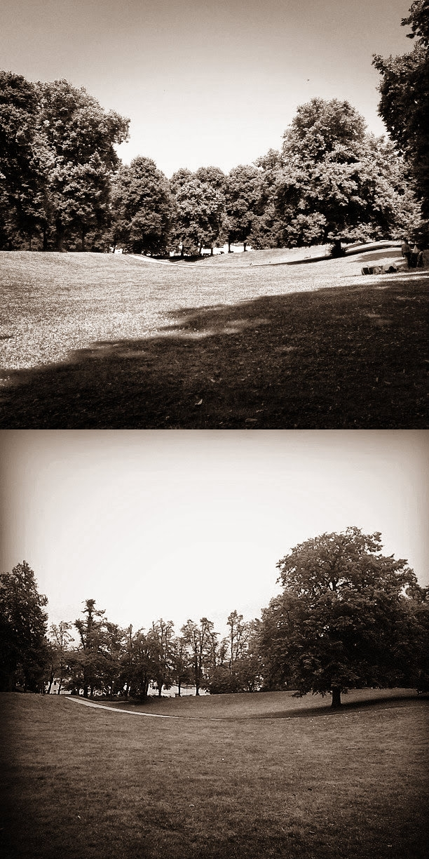 Vorher-Nachher Bild